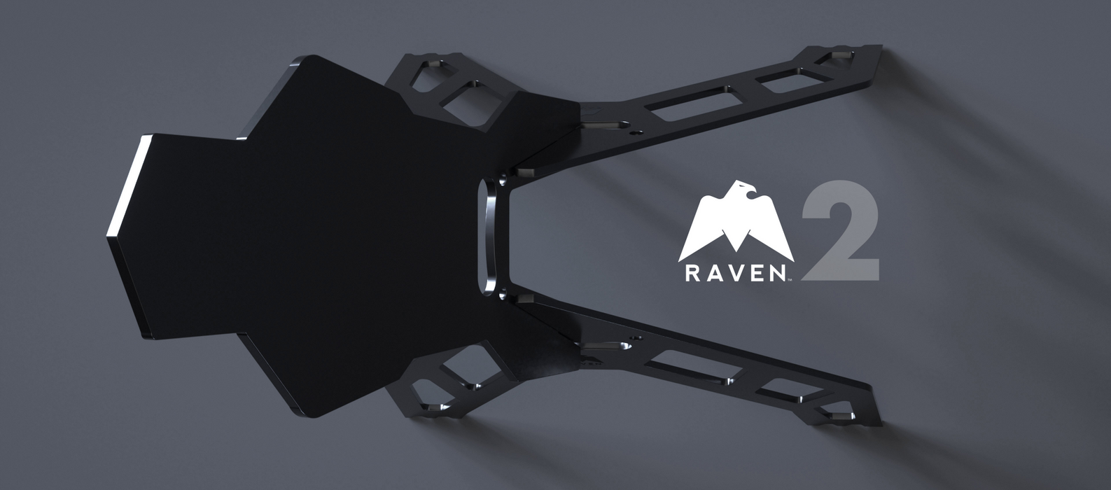 The Raven Target