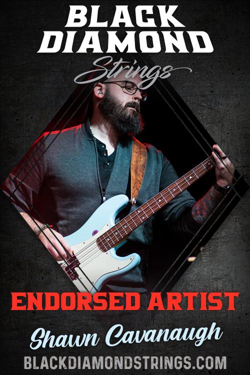 black-diamond-strings-endorsed-artist-shawn-cavanaugh.png