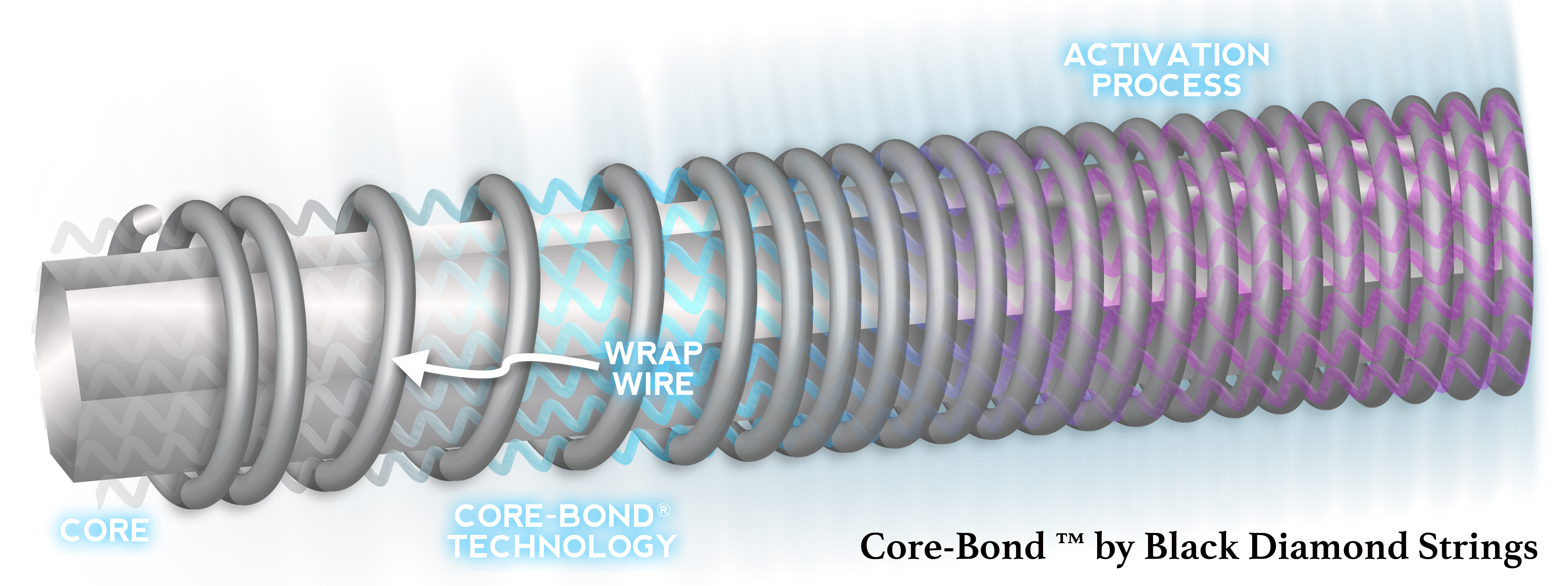 core-bond-illustration2.jpg