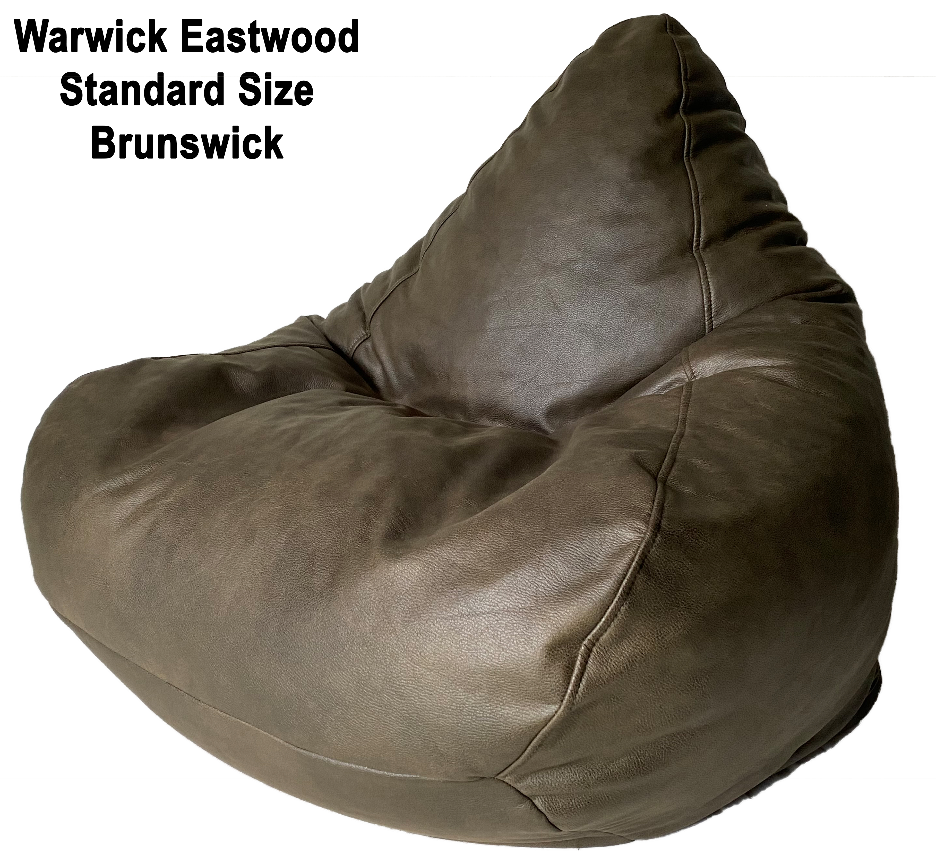 Warwick Eastwood Standard Size Bean Bag in assorted colours