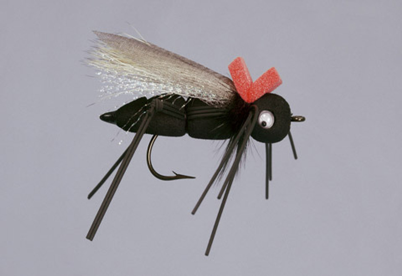 Ultimate Mormon Cricket - 6/Pack