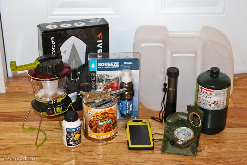 survival-supplies-doom-and-bloom-store.jpg