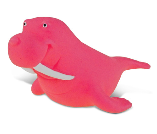Squirter  Walrus