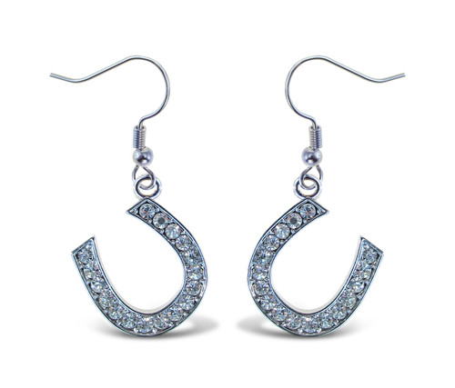 Sparkling Earrings Horse Shoe