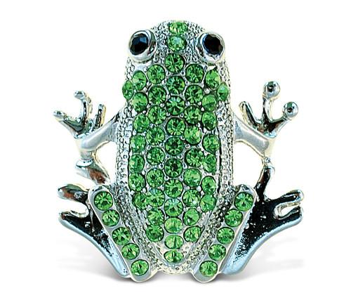 Sparkling Magnets Frog