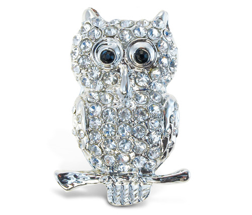 Sparkling Magnets Owl