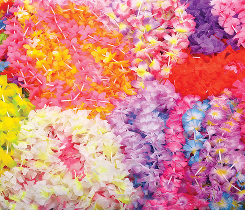 Hawaiian Leis - 50 Assorted Count Costumes