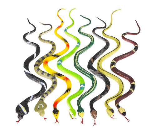 Colorful Rain Forest Rubber Snakes 12pc Set Bulk Novelties
