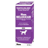Meloxicam Dog Suspension 10mL (Ilium brand)