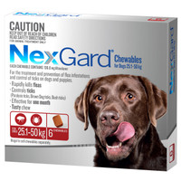 NexGard 6-Pack for Dogs 25.1 - 50kg