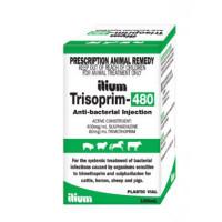 Trisoprim 480 100mL