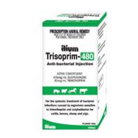 Trisoprim 480 250mL