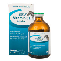Vitamin B1 (Thiamine) Injection 100ml