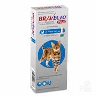 Bravecto PLUS for Medium Cats Blue 2.8-6.5kg (1 pack)