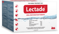 Lectade Duo Sachets (12 Pack)
