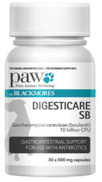 Paw DigestiCare SB 500mg 30 Capsules - Probiotic capsule - Pet Care Pharmacy