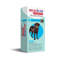 Bravect 1 Month Chew for Dogs 20-40kg (1 Pack)