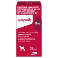 Galliprant 60mg (30 Tablets)