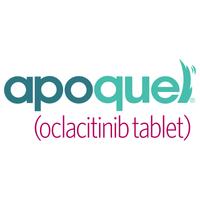 Apoquel (Oclacitinib) 5.4mg 100 Tablets for Dogs - generic Oclacitinib - dosage 5.4 mg