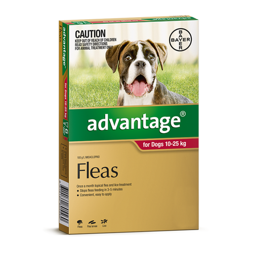 Advantage For Large Dogs 10-25kg Red 4 Pack