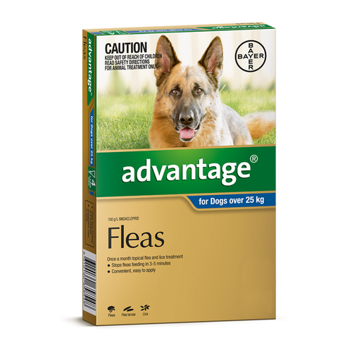 Advantage For Dogs Over 25kg Extra Large Blue 6 Pack