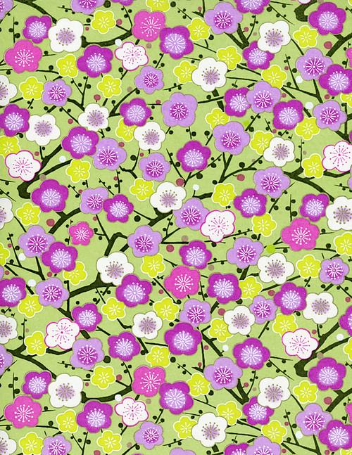 Hanko Designs Summer Plum Blossom Branches Washi paper