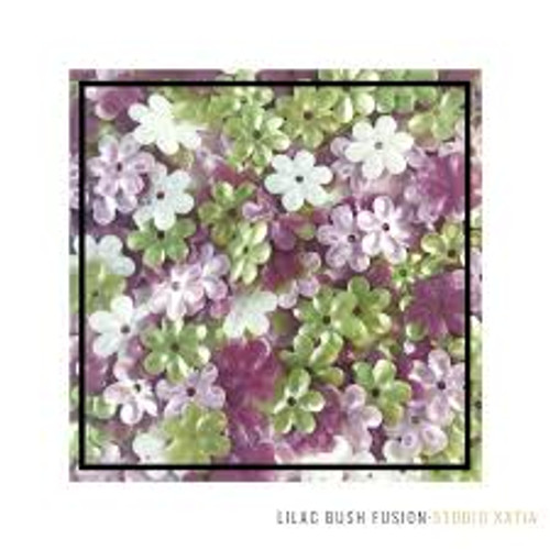 Studio Katia Sequin Fusion Lilac Bush