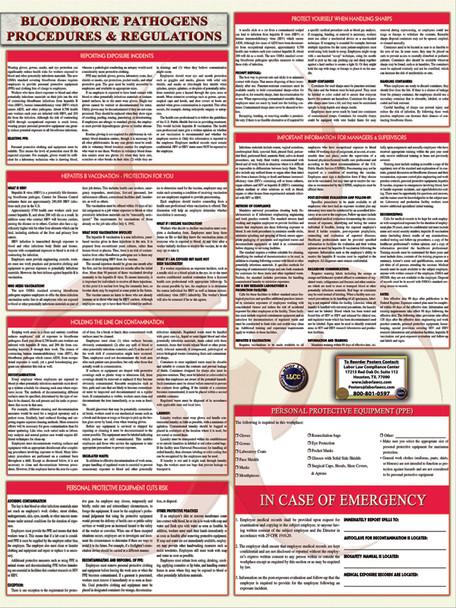 Bloodborne Pathogens Safety Specialty Poster