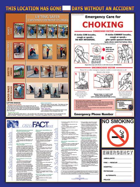 OSHA Multi-Safety Poster