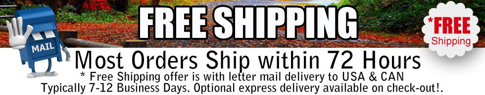 free-shipping-banner-lo.jpg