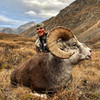 Another great stone sheep hunt.