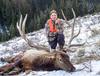 Elk Hunt in Montana