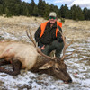 Montana Elk Hunt