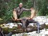 Moose hunt in British Columbia