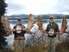 BC moose hunt success