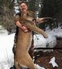 Mountain Lion hunting in Utah