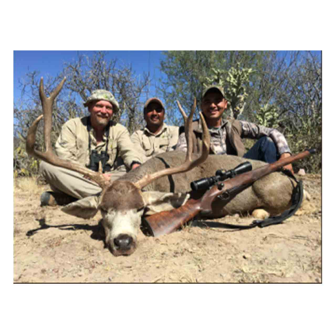 Baja Blacktail hunt in Mexico