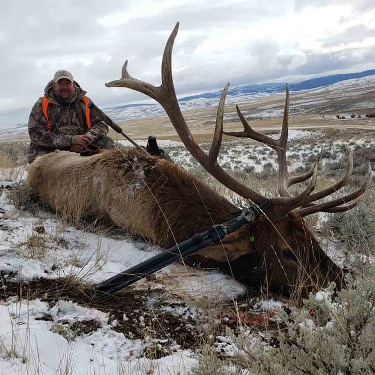 Montana fully guided rifle elk hunt