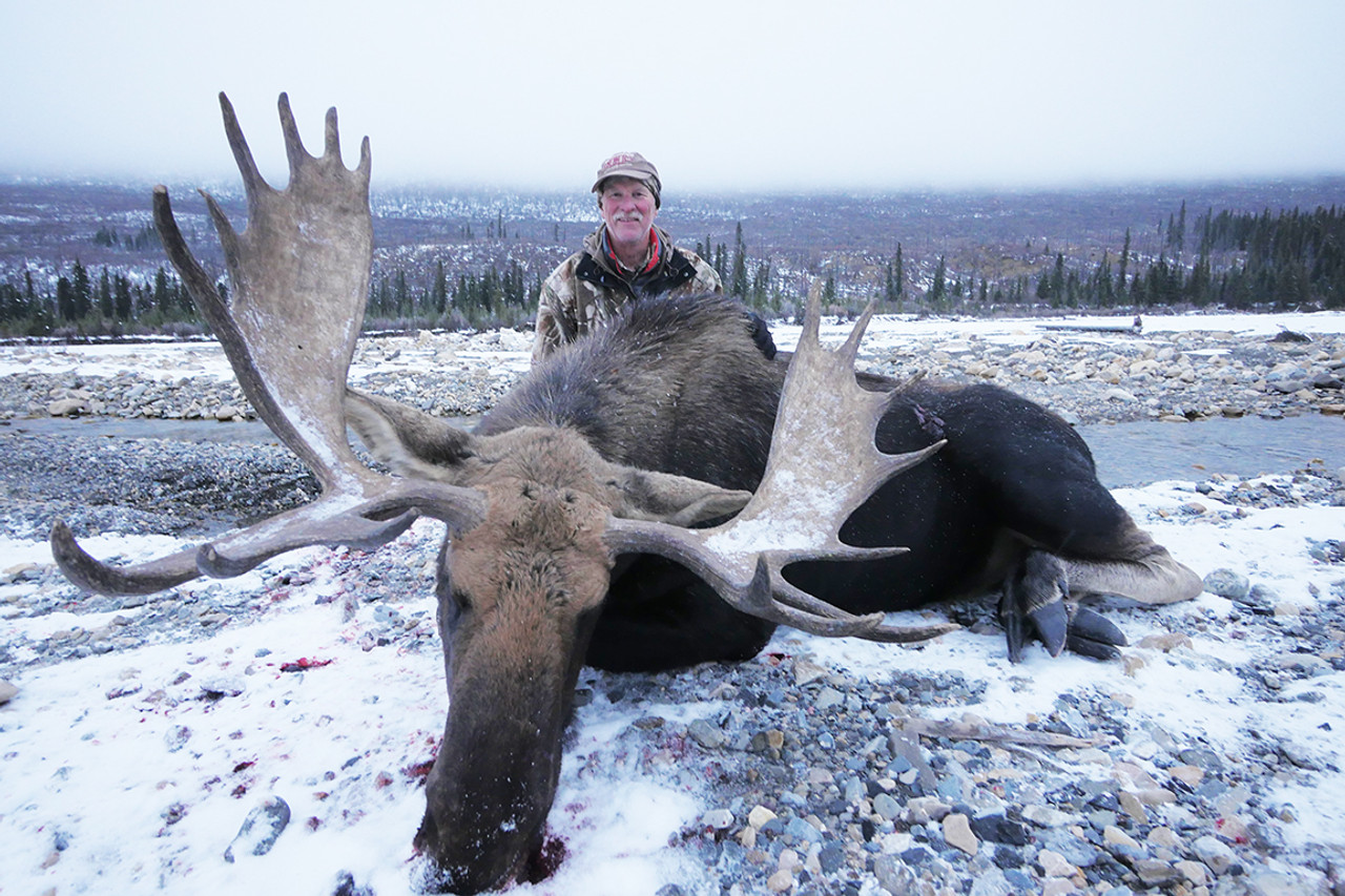Moose hunt done with Stone Mountain Safaris