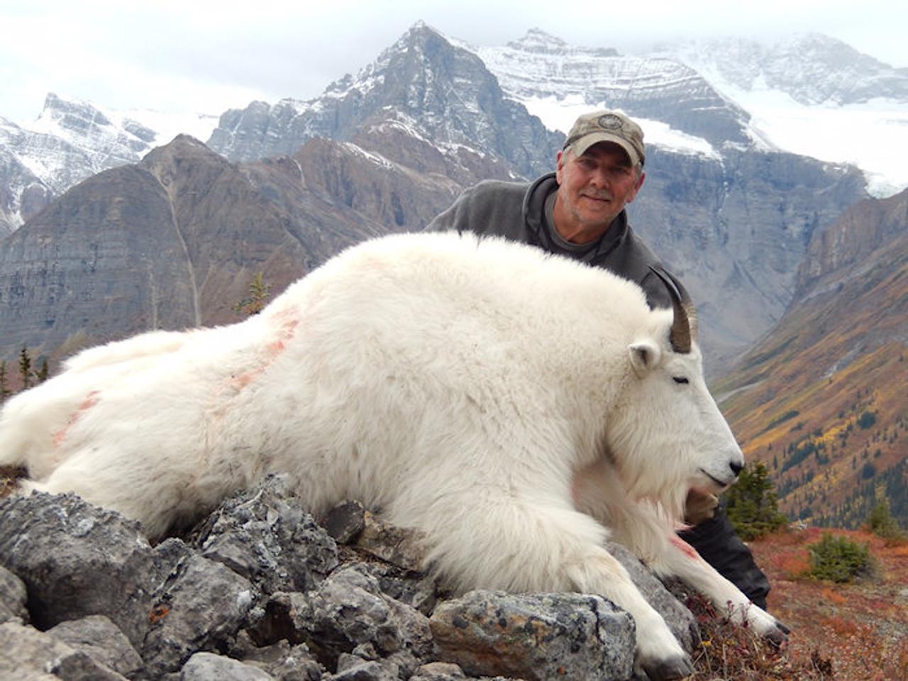 Mountain Goat hunt success