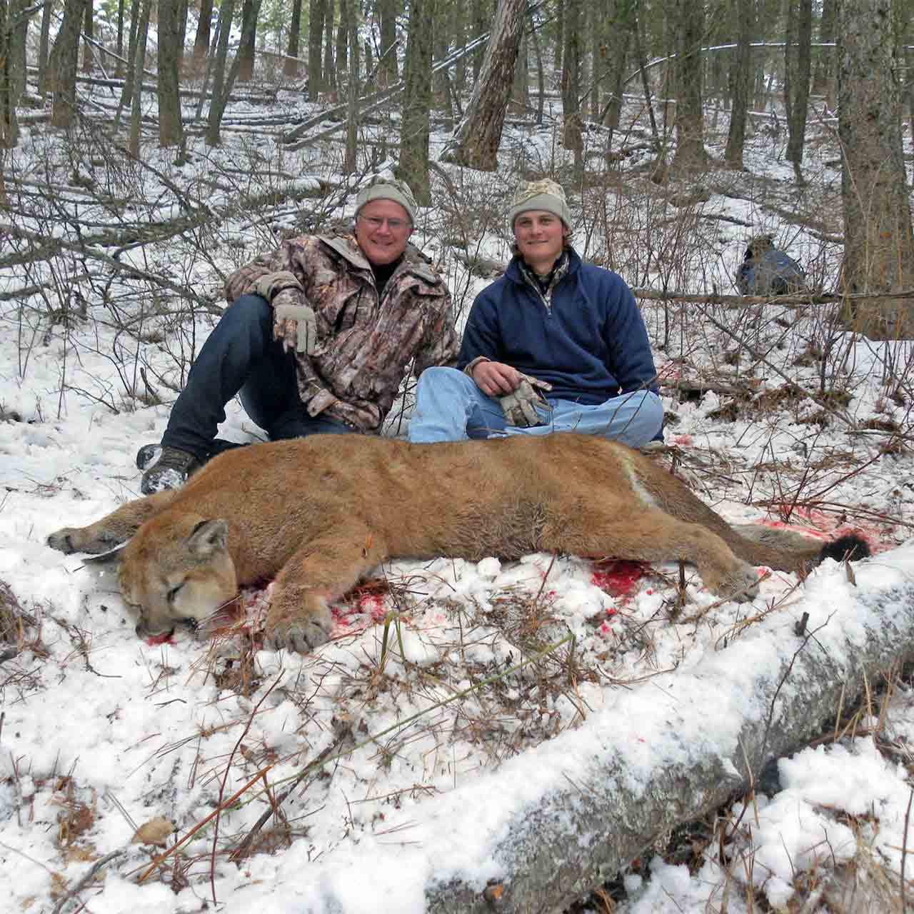Cougar hunts in British Columbia