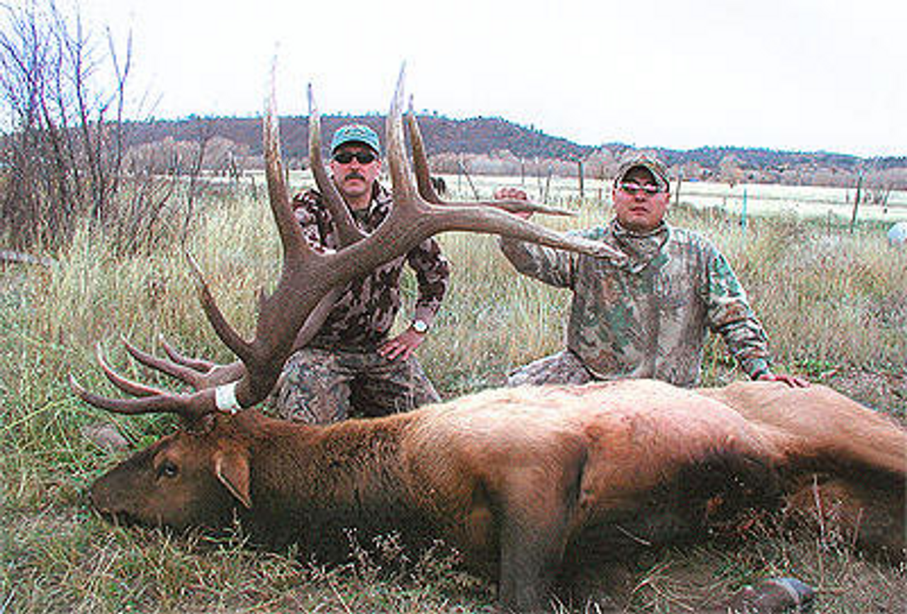 Elk Rifle - New Mexico - 1051