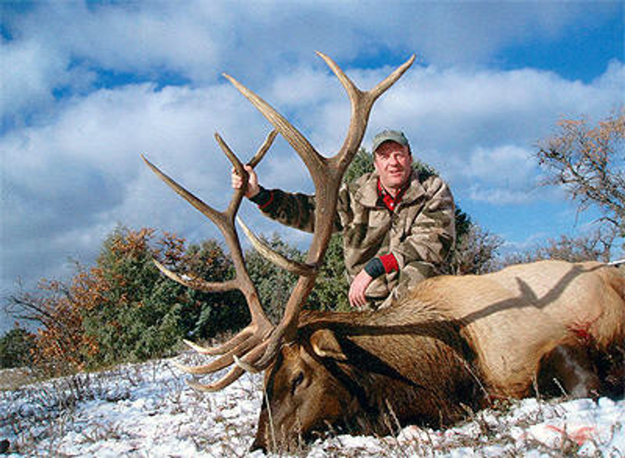 Rifle Elk hunt in New Mexico
