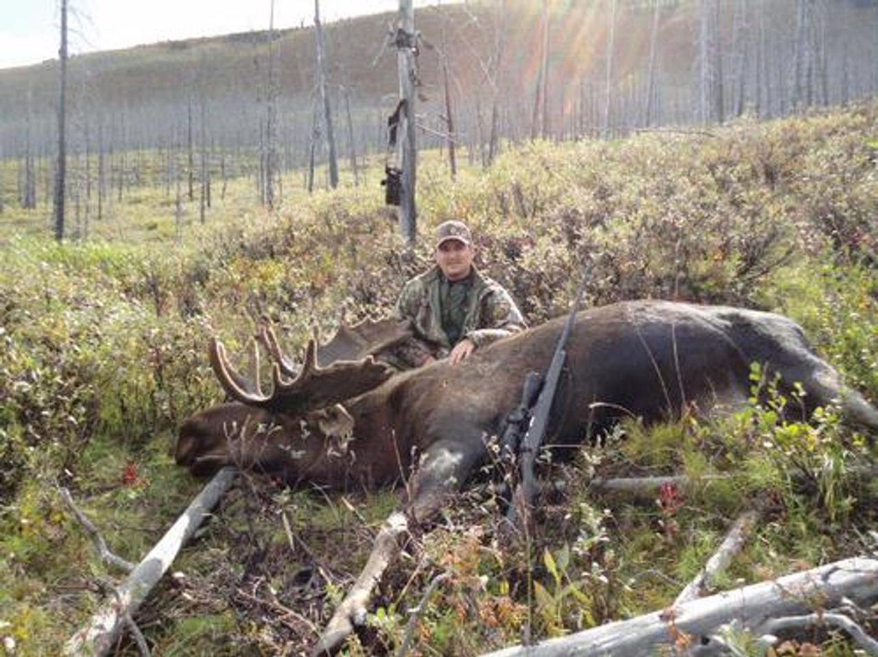 Canadian Moose Hunt in BC