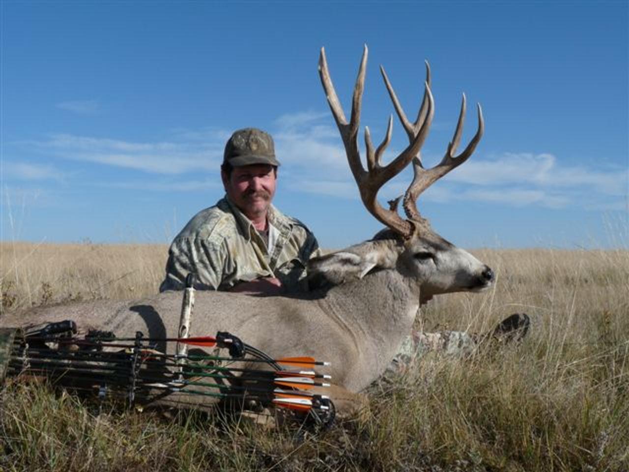 Mule Deer Archery - Alberta - 1042