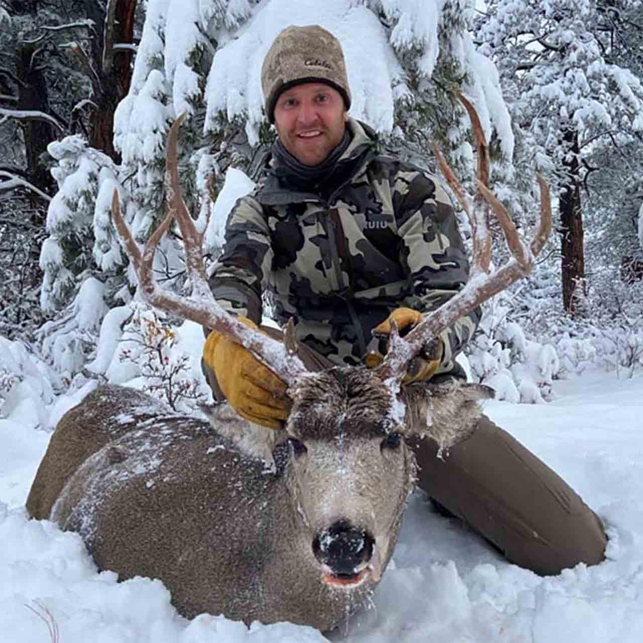 Mule deer hunt in New Mexico