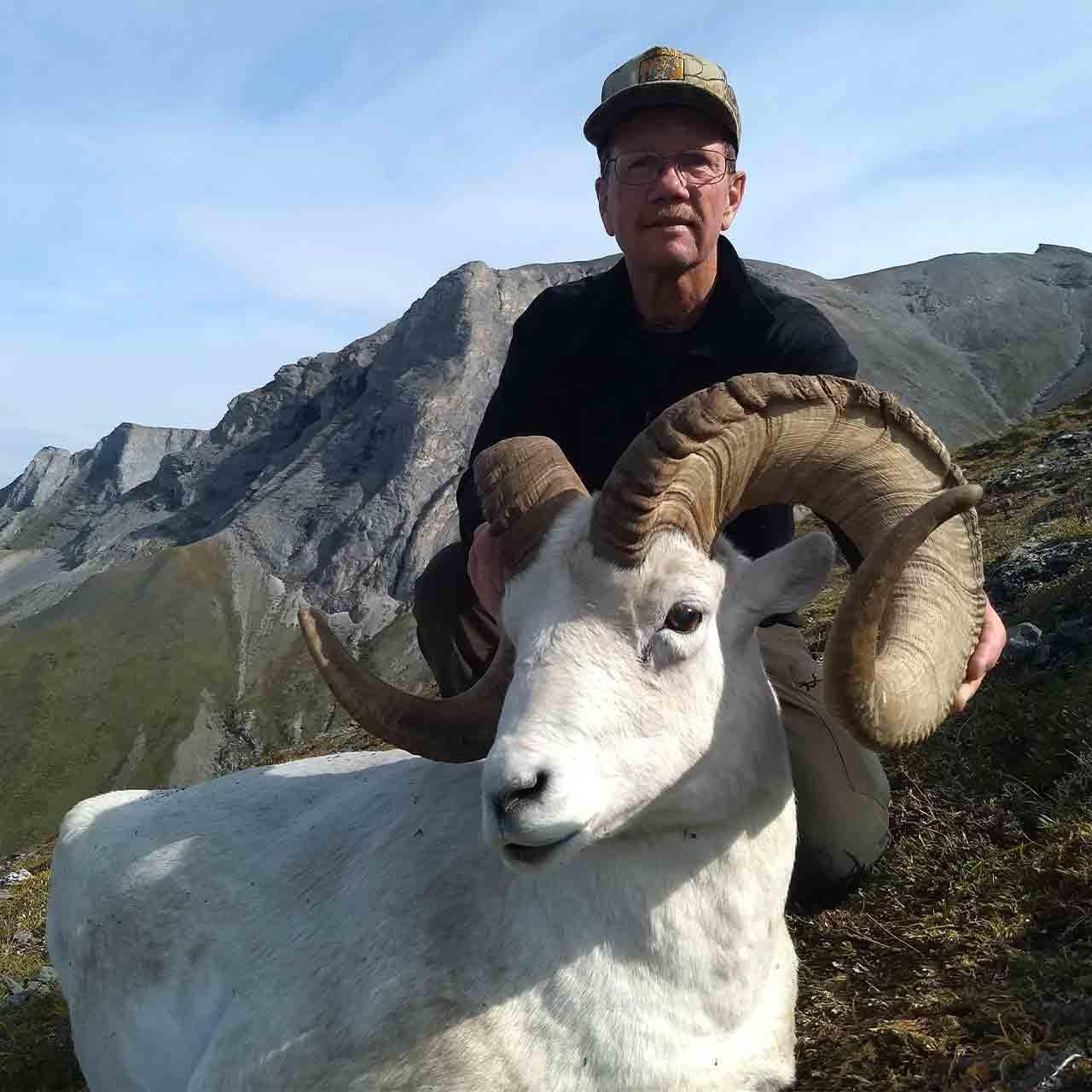 Exclusive-use Arctic National Wildlife Refuge Dall Sheep hunt in Alaska