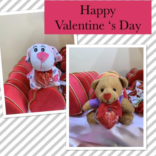 Valentine Doggie/Teddy