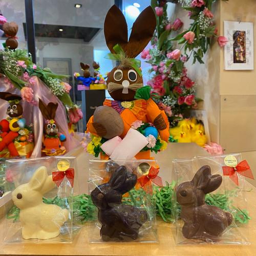 Chocolate Bunny  $15