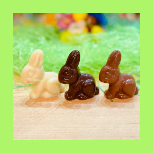 Chocolate Bunny  $9.50